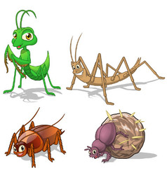Insect Cartoon Character Pack Five vector