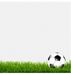 Soccer ball with grass border transparent vector