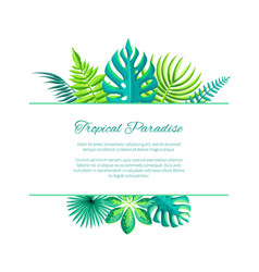 tropical paradise advertisement poster add text vector image