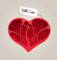 valentines anatomy heart vector image