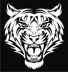 White Tiger Face vector image