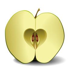 apple fruit heart vector image vector image