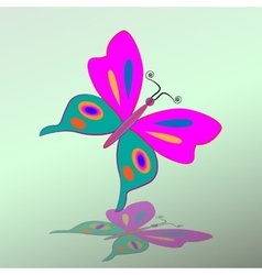 Butterfly icon Colorful silhouette with shadow vector image