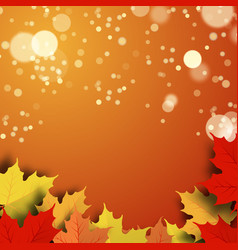 a beautiful autumn background vector image