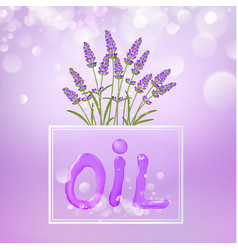 Cosmetic oil lotion with lavender flowers vector