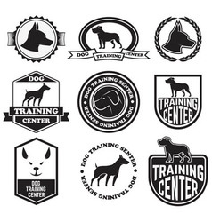 dog training senter vector image