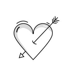 Line beauty romantic heart with arrow design vector