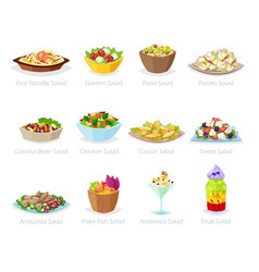 Salad healthy food with fresh vegetables vector