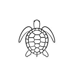 turtle hand drawn sketch icon vector image