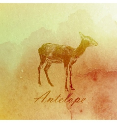 Vintage of a watercolor antelope on the old paper vector