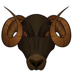 cartoon head of a ram vector image