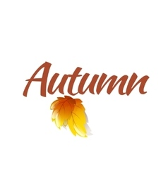 Autumn Logo Template vector image