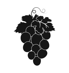 Bunch of wine grapes icon in black style isolated vector image