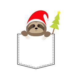 cute sloth face head in pocket christmas vector image