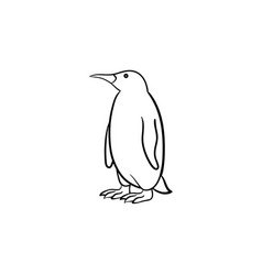 penguin hand drawn sketch icon vector image