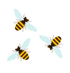 Three flying bees top view flat isolated vector