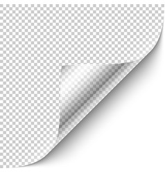 curled corner with shadow vector image