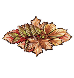 A bunch dry autumn leaves trees isolated on vector
