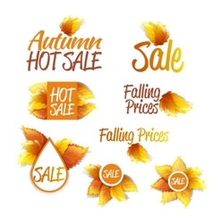 Autumn Sales Theme vector image