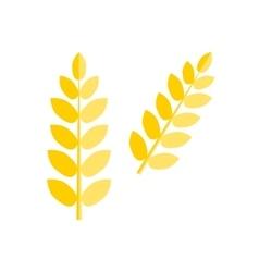 Ear wheat isolated vector image