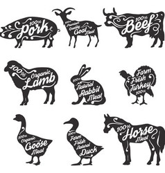 Farm fresh meat vector