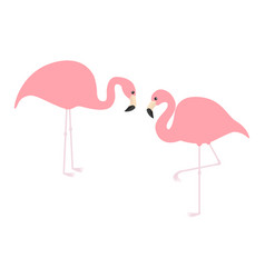 pink flamingo icon set exotic tropical bird zoo vector image