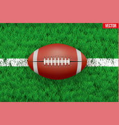 White line and american football ball on Sport vector image vector image