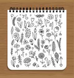 notebook design floral design vector image