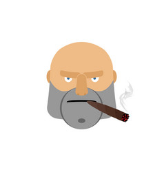 angry man with cigar aggressive male face isolated vector image vector image