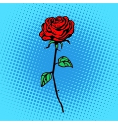 Flower red rose stem with thorns vector