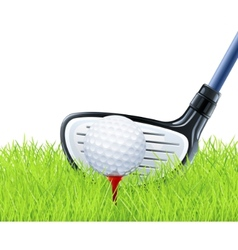 Golf club and ball on grass vector