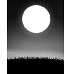 Midnight on meadow vector image