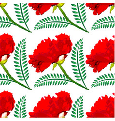 Red poppy on a white square background a lonely vector