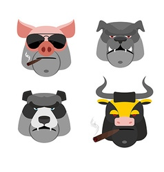 Set of angry animals head of a pig and bull bad vector