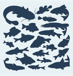 Silhouettes of river fish vector