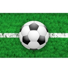 White line and football ball on Sport grass field vector image