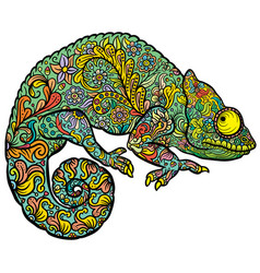 Zentangle stylized multi coloured chameleon vector