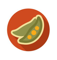pea flat icon vegetable vector image vector image