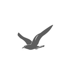 seagull icon in flat style isolated vector image