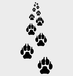 Trail of dogs 3 vector image