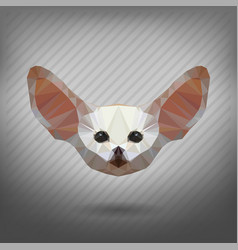 fennec fox in style origami animal in the vector image