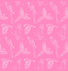 seamless pattern hand drawn parrot vector image