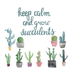 succulents and calligraphy quote keep calm and vector image