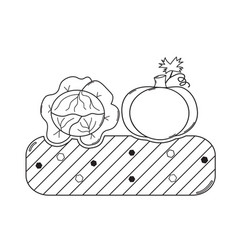 Thin line gardening bed with vegetables vector