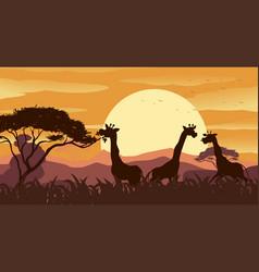 background scene with giraffe in savanna field vector image