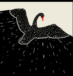 background with flying black swan hand drawn bird vector image