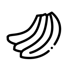 Bunch bananas icon outline vector