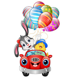 Easter bunny with chicks driving a car carries eas vector