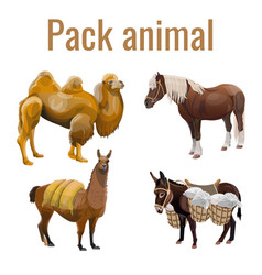 Pack animals set vector
