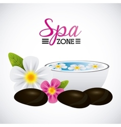 spa relaxation area vector image